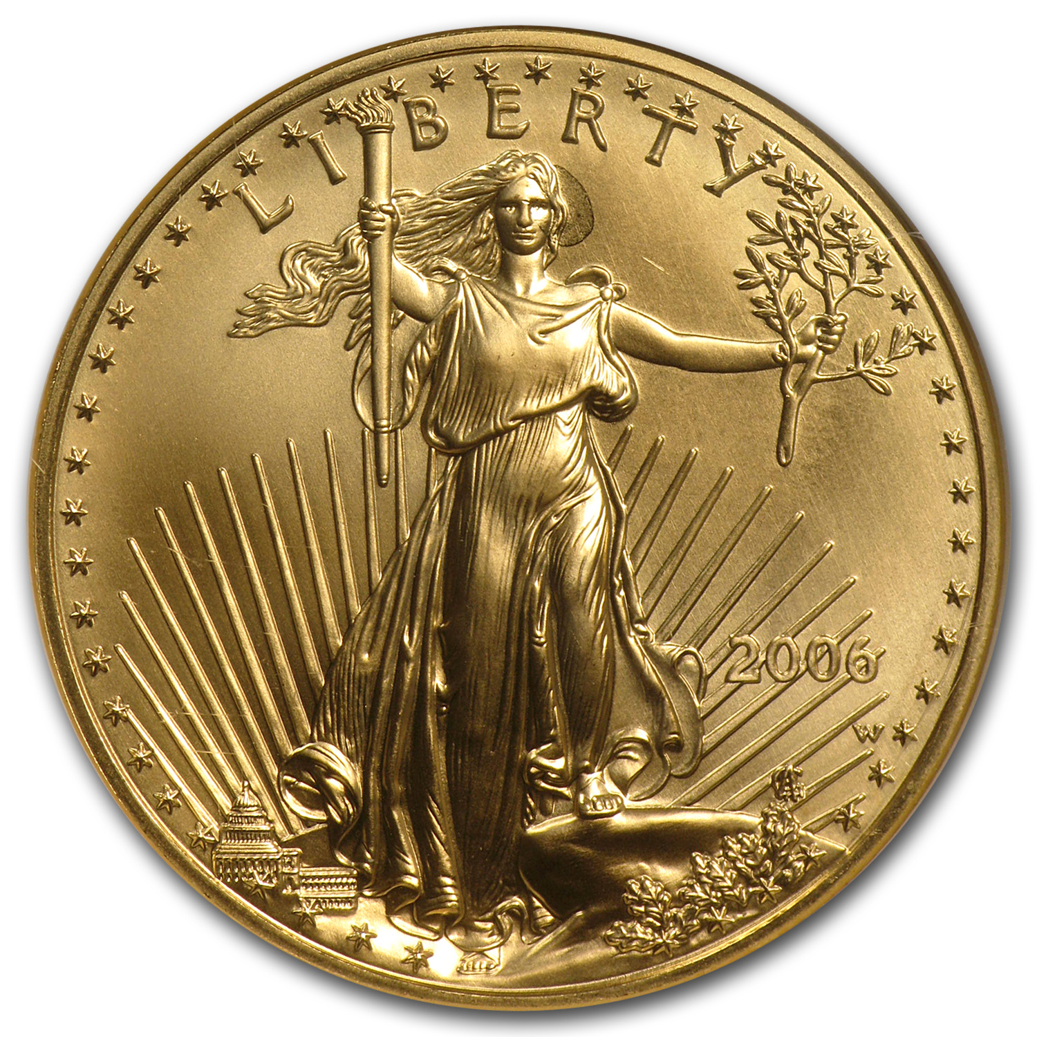 2006-W 1 oz Burnished Gold American Eagle MS-69 NGC